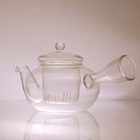Tea Pot with the nozzle